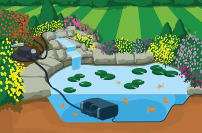 aqua-bioforce-withfish-illo